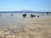 sharm-tamra-beach-2