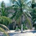 Ho selezionato alcuni video che illustrano meglio di mille parole le San Blas Islands-Panama, un posto veramente unico, da evitare se si è troppo attaccati […]
