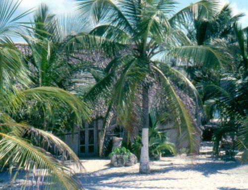 San Blas Islands-Panama: immagini dai Tropici (video)