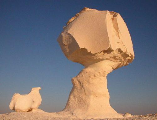 Spedizione nelle oasi del deserto bianco egiziano