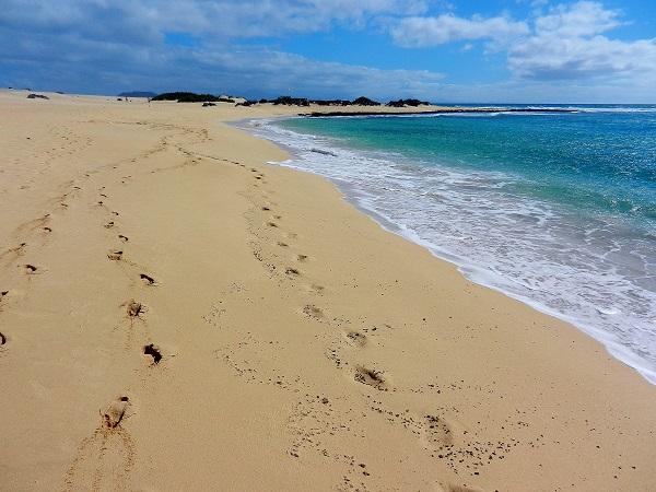 Spiaggia alle Dune di Corralejo