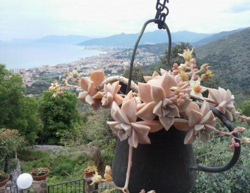 Itinerari fra i paesi dell'entroterra Ligure…