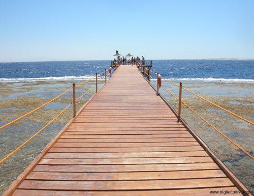 Meraviglioso Mar Rosso a Sharm el Sheik !