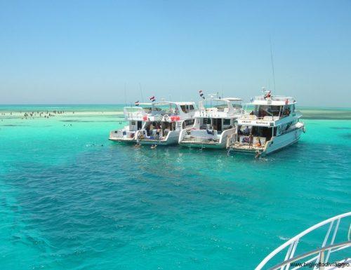 Sharm: la perla del Mar Rosso